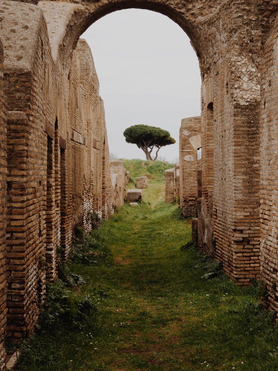 ruins near tree