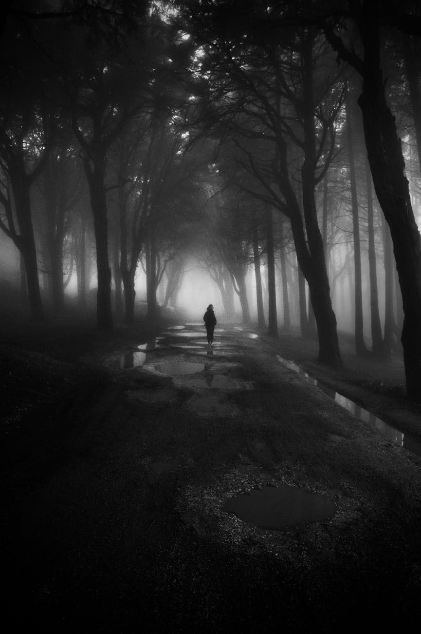 greyscale photography of person walking between trees